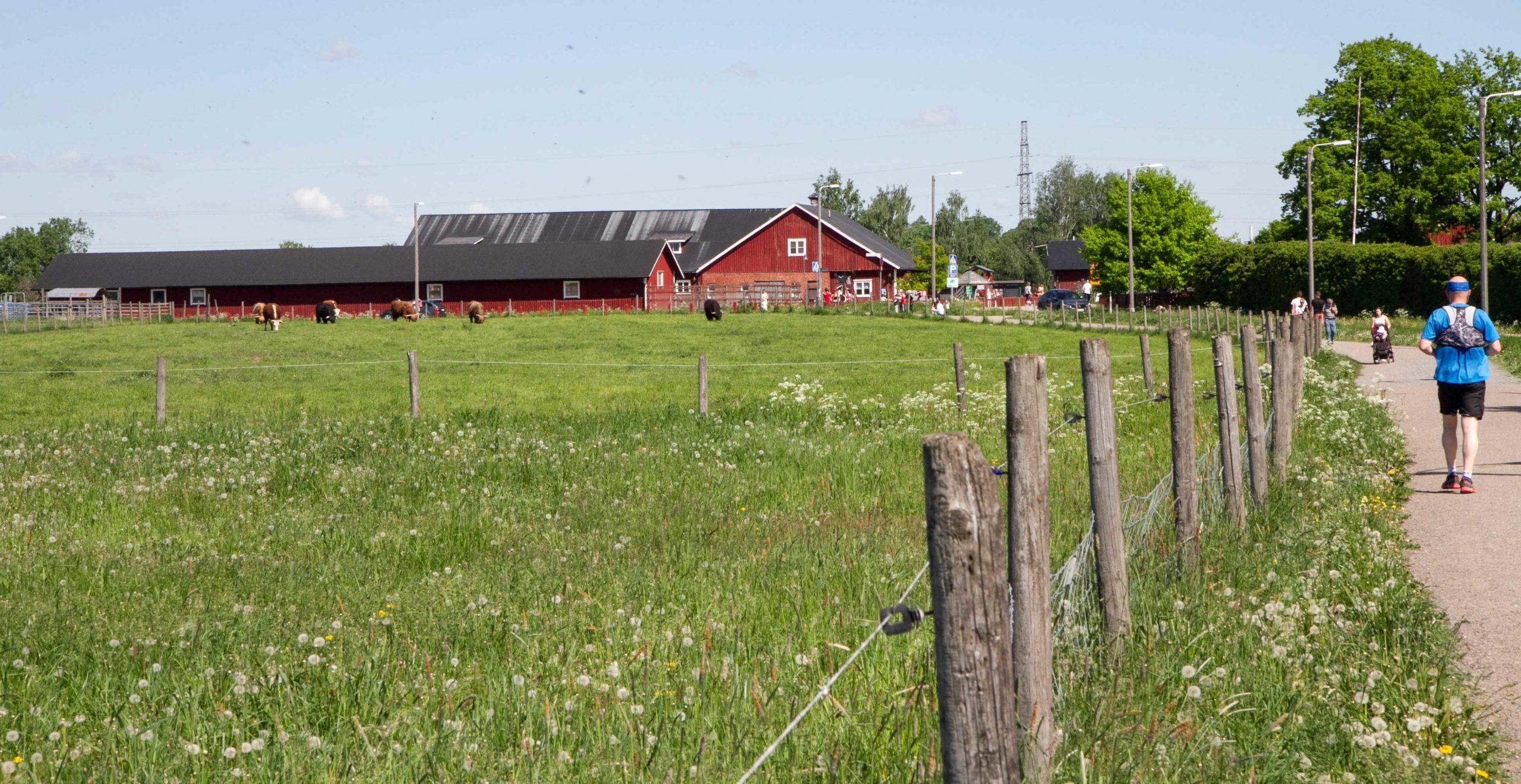 Haltialan ympärillä on peltoja ja niittyjä. Niiden ympärillä on aitoja.