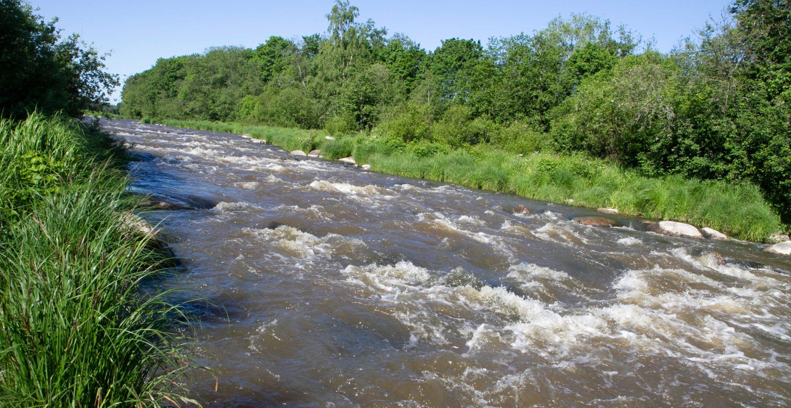 Haltialan kohdalla Vantaanjoessa on Ruutinkoski. Koski on 300 metriä pitkä. Vesi putoaa koskessa kolme metriä. Veden pinta on siis kosken jälkeen kolme metriä alempana kuin ennen koskea.