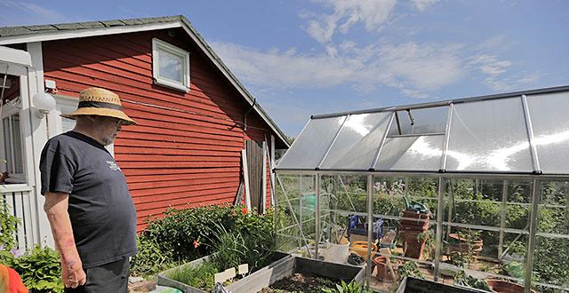 Kalevin punainen mökki. Kalevi seisoo mökin edessä ja katsoo kasvihuonetta.